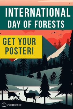 International Day of Forests is on March 21st and we made a special poster to celebrate! You can download it for free and learn some fun forest facts too.   #sustainability #forests #trees #nature