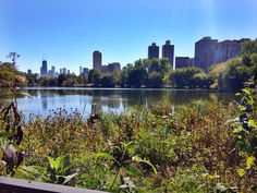 Lincoln Park, Chicago, North Pond