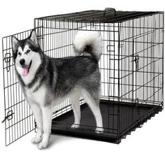 Dog Crates for Extra Large Dogs - XXL Dog Crate Pet Cage Double-Door Best for Big Pets - Wire Metal Kennel Cages with Divider Panel & Tray - in-Door Foldable & Portable for Animal Out-Door Travel Cheap Dog Kennels, Dog Kennels For Sale, Pet Kennels, Extra Large Dog Crate, Large Dogs, Small Dogs, Dog Cages, Pet Cage, Xxxl Dog Crate