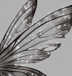 fairy - Twitter Search / Twitter Angel Aesthetic, Gray Aesthetic, Black And White Aesthetic, Aesthetic Grunge, Aesthetic Photo, Aesthetic Pictures, White Picture, Picture Wall, Bild Gold
