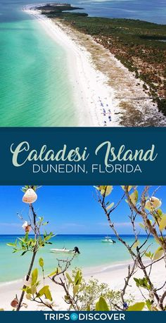 Caladesi Island – Dig Your Toes in the Sand in Dunedin, Florida - HoneyMoon Archives 2019 Florida Vacation, Florida Travel, Florida Beaches, Honeymoon Island Florida, Tarpon Springs Florida, Florida Trips, Florida Keys, Sandy Beaches, Dunedin Florida