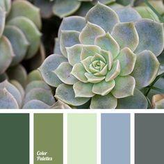 El post de hoy lo dedico a enseñaros, unas pocas paletas de color elegidas para inspiración!