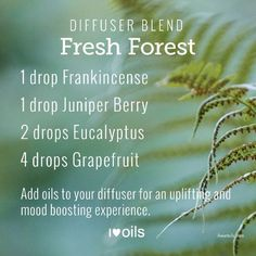 What are you diffusing today? I love new essential oil diffuser blends so much that I put  2 new ones each week. Enjoy!