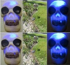 Solar Halloween Skull Lights Decoration Blue LED Light Garden Stake Yard Lamp >>> Want additional info? Click on the image.