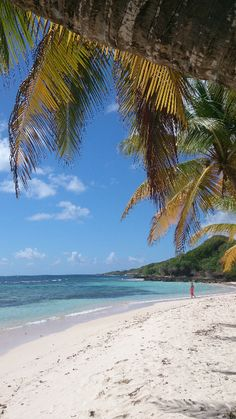 Plage de Petite Anse, Marie-Galante Tahiti, Marie Galante Guadeloupe, Things To Do In Santorini, French West Indies, Cuba, France, Caribbean Sea, French Polynesia, Volcanoes