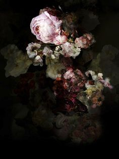This is not about flowers 04 - 2014 - isabelle menin