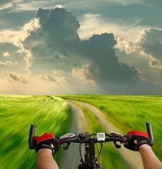 For more great pics, follow bikeengines.com #bike #trail #beautiful