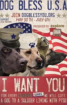 Many of our Vets returning home from war have PTSD......service dogs give them tremendous emotional support.
