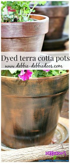 Easy DIY project   Rit dye painted on terracotta pots. Transform your garden containers in just a few minutes!
