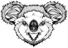 Zentangle Animals Hd_8f9431849809fca5eadd3b3056 ...
