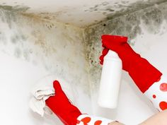 How to remove mould and mildew from any surface - Kidspot #thenest