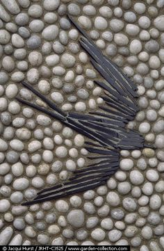 Slivered slate swallow with ovoid stone surround | artist - Maggy Howarth