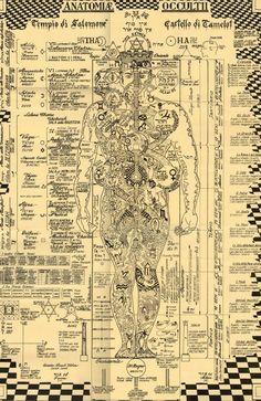 solomons Ancient Symbols | What is Codex Alimentarius?