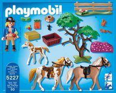 Playmobil 5227 Country Paddock with Horses and Pony: Amazon.de: Spielzeug