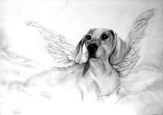 Angel Dachshund; for all those who have lost!