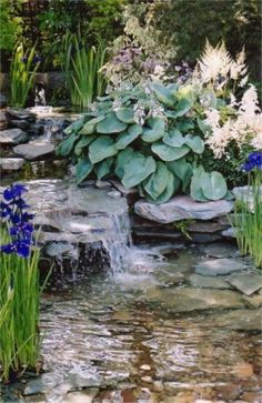 grand-cascade-de-jardin fleurs et plantes deco
