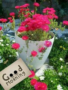 [Good morning love] Latest good morning images for love ~ Good morning inages Good Morning Beautiful Flowers, Good Morning Nature, Good Morning Roses, Good Morning Images Flowers, Good Morning Cards, Good Morning Photos, Good Morning Gif, Good Morning Greetings, Morning Pictures