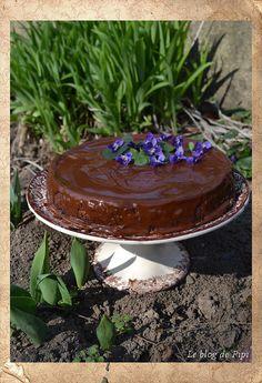 Čokoládový tvarohový dort