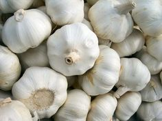 How Do I Freeze Fresh Garlic or Garlic Bulbs?. Proper storage of garlic prevents deadly botulism toxin from growing and keeps your bulbs fresh. Garlic's pH level ranges between 5.3 and 6.3, making it a low-acid vegetable, according to the University of California at Davis. Improper storage of garlic bulbs in warm, humid places increases the...