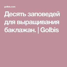 Десять заповедей для выращивания баклажан. | Golbis