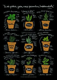 Yrttitarha, B2   Ateljee Keltainen Talo Kitchen Posters, Salvia, Planter Pots, Sweet Home, New Homes, Garden, Prints, Illustrations, Design