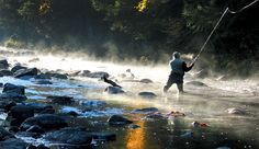 Western Maine Fly Fishing