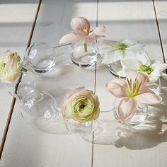 Glass Bubble Vase - A friend gifted me one of these years ago... I still have to put it to use!