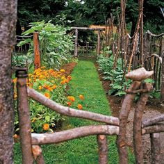 what to do with fallen tree limbs or just looking for a cute cost cutting fence