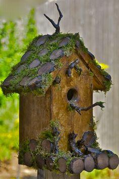 bird house by jEsSiEe