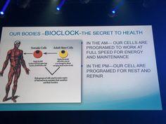 주네스글로벌 의학자문의원이며 AM PM및 다이어트 신기원 ZEN bodi 제품개발자인 빈센트 지암파파박사님의 AM PM 강의자료사진... 제품구입사이트:www.sponsor.so