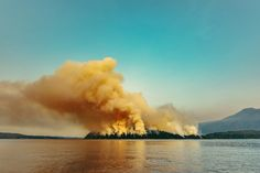 Dog Mountain Forest Fire | Source