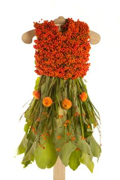 Desirable Dresses Made Entirely From Nature Nicole Dextras The Little Green Dress Project.........Crazy Fairy dress!!!