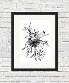 Stag horn Sketch Print by BronwynHoustonArt on Etsy Illustration Art, Illustrations, Art For Art Sake, Sign Printing, Indoor Plants, Simple Designs, Horns, Etsy Store, Wall Art Prints