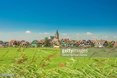 Foto de stock : The Netherlands. View of a green meadow and Marken town. Traditional dutch houses
