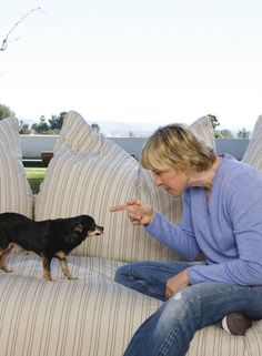 "Our Dog Lover of the day...hilarious Ellen Degeneres is pretty serious when it comes to helping animals in need. She even started her own facebook game ""Joy Kingdom"" with proceeds going to various animal charities."