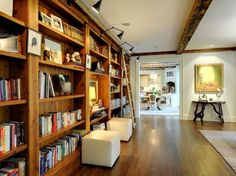 Extraordinary Home Library Ladders