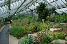 green house inside a house - Google Search