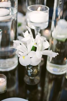 Formal Modern Classic  // White Iris in a rustic metal bud vase