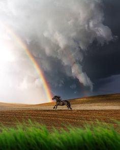 "MILOŠ SIMIĆ on Instagram: ""Freedom 🐎 Posto je ovaj dan obelezio IG Music na mom instagram profilu, koju bi vi pesmu pustili uz ovu fotografiju? 🤔 Ja ovog puta ostajem…"" Nature View, Jolie Photo, Great Photos, Niagara Falls, Serenity, Photo Art, Cute Animals, Environment, Country Roads"