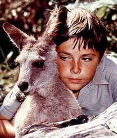 Skippy, das Buschkänguruh(Originaltitel: Skippy) ist eine australische Fernsehserie.  Diese Abenteuerserie für Kinder wurde von 1966 bis 1968 produziert. Die australische Antwort aufLassieum eingraues Känguru, das häufig mit einer Baseball-Kappe dargestellt wurde, war ein Welterfolg und wurde in 128 Länderverkauft. Sie zählt nebenFlipper,DaktariundFuryzu den Klassikern bei den Tierfilmserien. Regie führte unter anderem der australische SchauspielerEd Devereaux, der auch eine der…