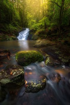 Kondalilla National Park, Montville, Australia — by Chrystal Hutchinson. The first falls you come to as you enter Kondalilla National Park Coast Australia, Queensland Australia, Australia Travel, Brisbane, Melbourne, Sunshine Coast, Nature Pictures, Places To See, Nature Photography
