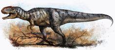 Giant Yangchuanosaurus
