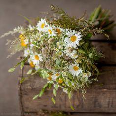 daisy craspedia wedding bouquets - Google Search