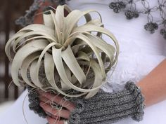 Live Organic Xerographica Wedding Bouquet | Green Bride Guide Shop