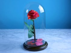 DIY Beauty and the Beast Enchanted Rose. Great to Decorate with!