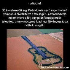 <p>35 évvel ezelőtt egy Pedro Ureta nevű argentin férfi váratlanul elveszítette a feleségét… a zenekedvelő nő emlékére a férj egy gitár formájú erdőt telepített, amely mostanra igazi légi látványossággá nőtte ki magát…</p>