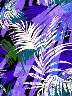 Inspiration jungle  #Zgeneration