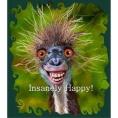 Insanely Happy. Poster | Zazzle.com