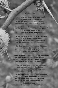"""Composición con fotografía personal para el poema """"El Espino"""" de Gabriela Mistral"""