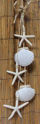 California Seashell Company Retail - Irish Scallop and White Star Garland, $9.99 (http://www.caseashells.com/irish-scallop-and-white-star-garland/)